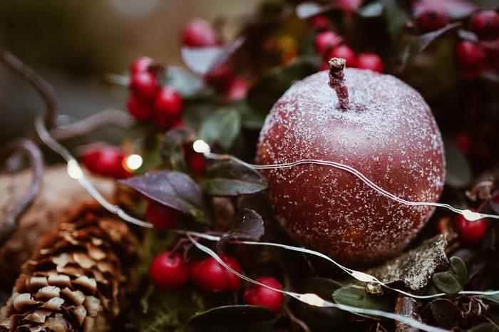 Устойчивост Коледа
